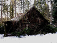 613-BTS-Cabin in the Woods 4