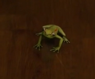 3W2-Frog