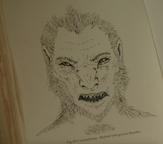 File:514-Lycanthrope book image.png