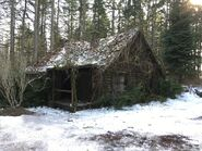 613-BTS-Cabin in the Woods 3