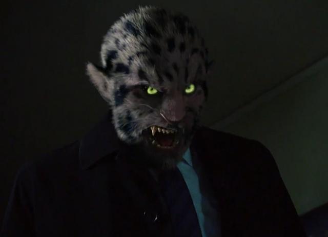 File:306-Leopard Wesen.png