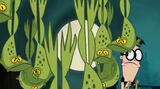 Groggy frog transition