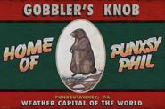 Groundhog Day Broadway Gobbler's Knob sign
