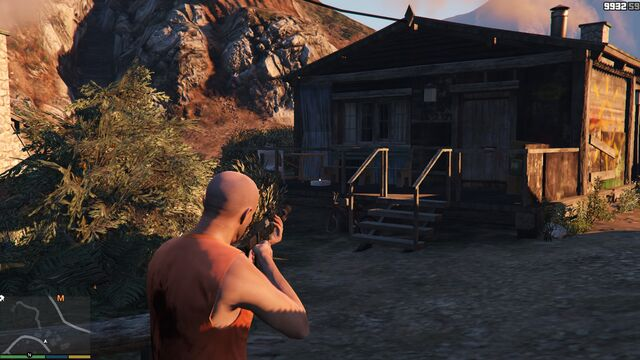File:AltruistCamp-GTAV-Briefcase-3.jpg