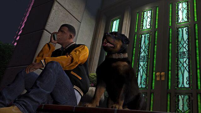 File:Official PC Screenshot GTAV Facebook Franklin Chop.jpg