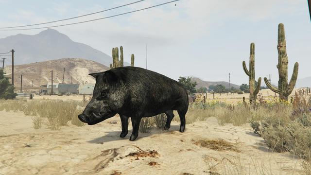 File:Peyote Plants Animals GTAVe Boar.png