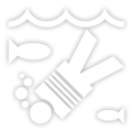 FedTheFish-GTA4-trophy.PNG