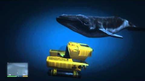 GTA V - The Blue Whale