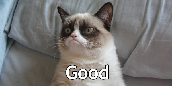File:Grumpy Cat-Good.jpg