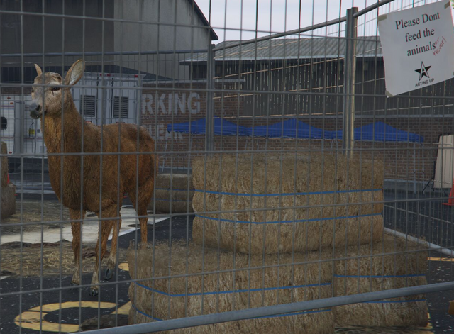 File:Director Mode Actors GTAVpc Animals Deer.png