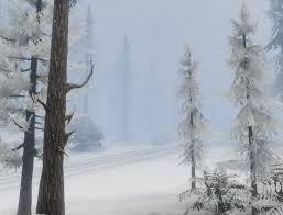 File:PaletoForest-GTAV-Snow.jpg