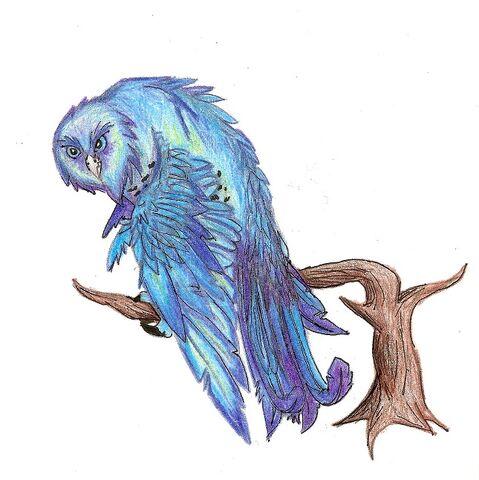 File:Dragon owl.jpg