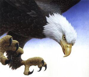 Cowdrey eagle
