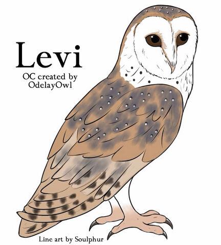 File:Leviii2.jpg