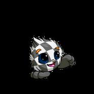 CheckeredJubjub