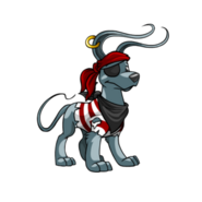 Gelert pirate