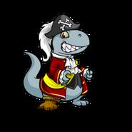 Grarrl pirate