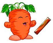 Carrot chia