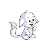 Kacheek white