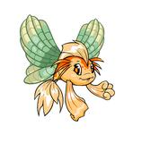 Koi shell faerie wings