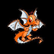 Draik orange