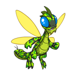 Buzz camouflage happy