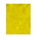 Experientia Docet Hammer emblem