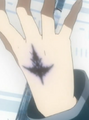 Shuu's Power of the King mark.png