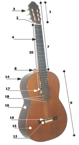 File:Acoustic guitar parts.png