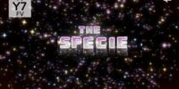 The Specie