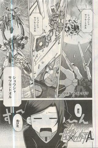 File:Dragon Hang Strike Seven Sword Strike Satellite Strike.jpg