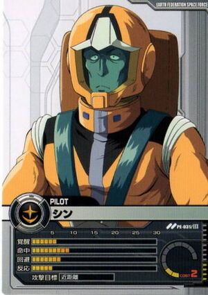 Shin-Profile