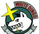 White Dingo Team