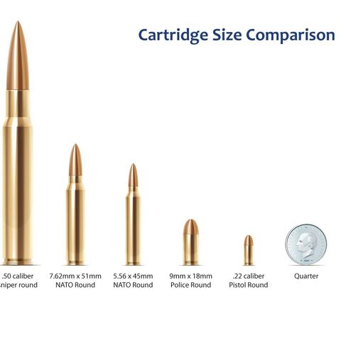 A rifle cartridge size diagram showing different types of rifle cartridges