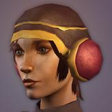 Muffler HelmetF