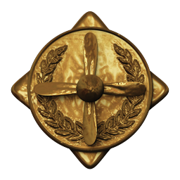 File:Pilot Badge13.png