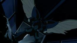 Zx-Toles wings