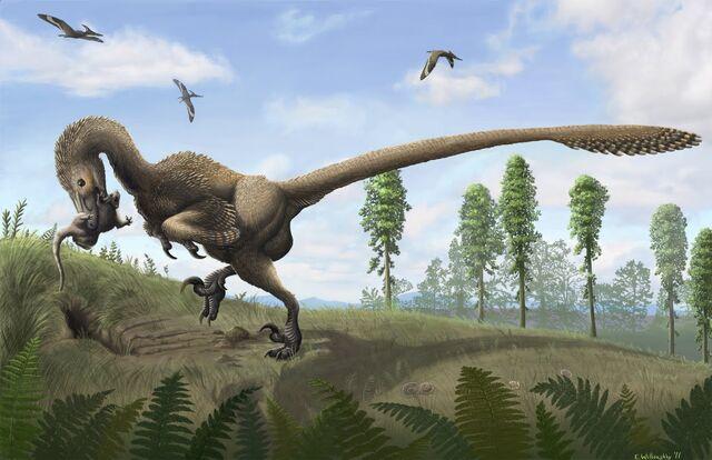 File:Saurornitholestes.jpg