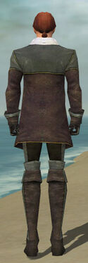 Mesmer Tyrian Armor M gray back