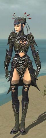 File:Necromancer Elite Necrotic Armor F gray front.jpg