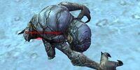 Dreamroot Mandragor
