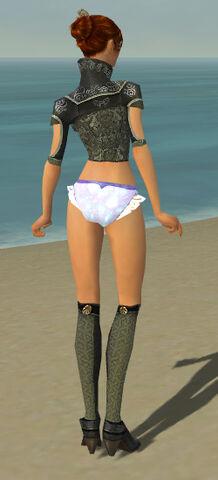 File:Elementalist Canthan Armor F gray chest feet back.jpg