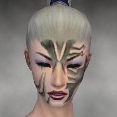 File:Necromancer Elite Luxon Armor F gray head front.jpg