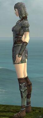 Warrior Tyrian Armor F gray side
