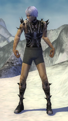 File:Necromancer Obsidian Armor M gray arms legs front.jpg