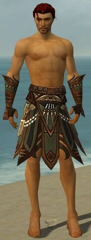 File:Ritualist Monument Armor M gray arms legs front.jpg