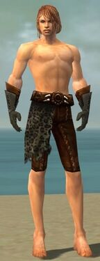 Ranger Istani Armor M gray arms legs front