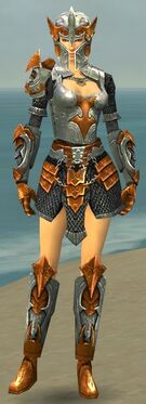 Warrior Elite Templar Armor F dyed front