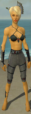 Assassin Shing Jea Armor F gray arms legs front