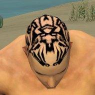 File:Monk Vabbian Armor M dyed head front.jpg